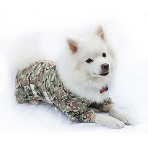 Cover Me By Tui Jammies - Cover Me by Tui is approved by veterinarians (me!) and is the most comfortable and effective alternative to the E-Collar around. The post-surgical pet garment that resembles a dog onesie, comes in a range of colors, options and sizes to fit any dog's needs. This one piece pet garment gives owners an alternative to a dog cone or