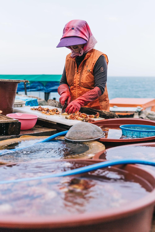 Korea Travel Charmaine Wu Photography Singapore
