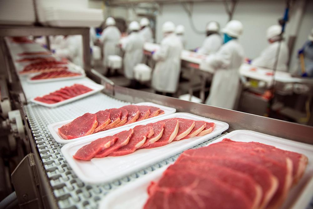 Food Safety Regulation