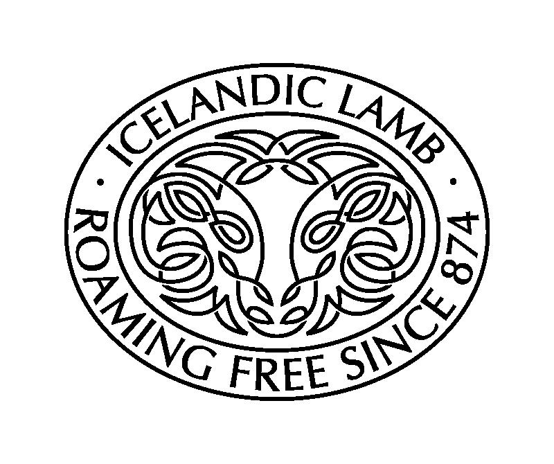 Icelandic Lamb Roaming Free