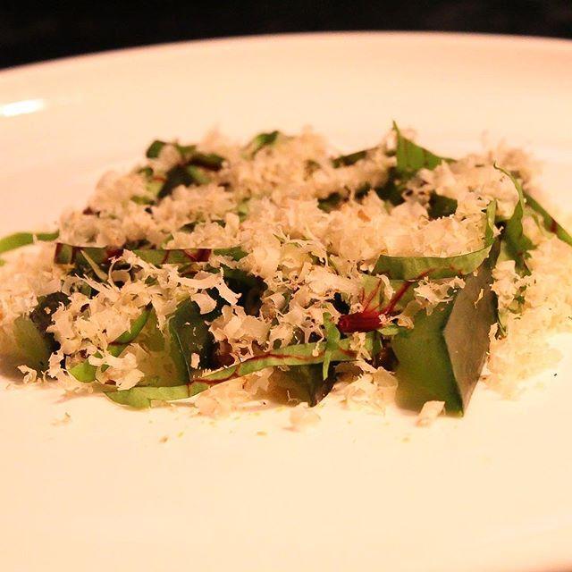 Veganúar á Nostra! 2 fyrir 1 á 6 rétta veganseðli allan janúar! 🌱 ______  Come enjoy Veganuary with 2 for 1 on the 6-course vegan tasting menu at Nostra! 🌱
