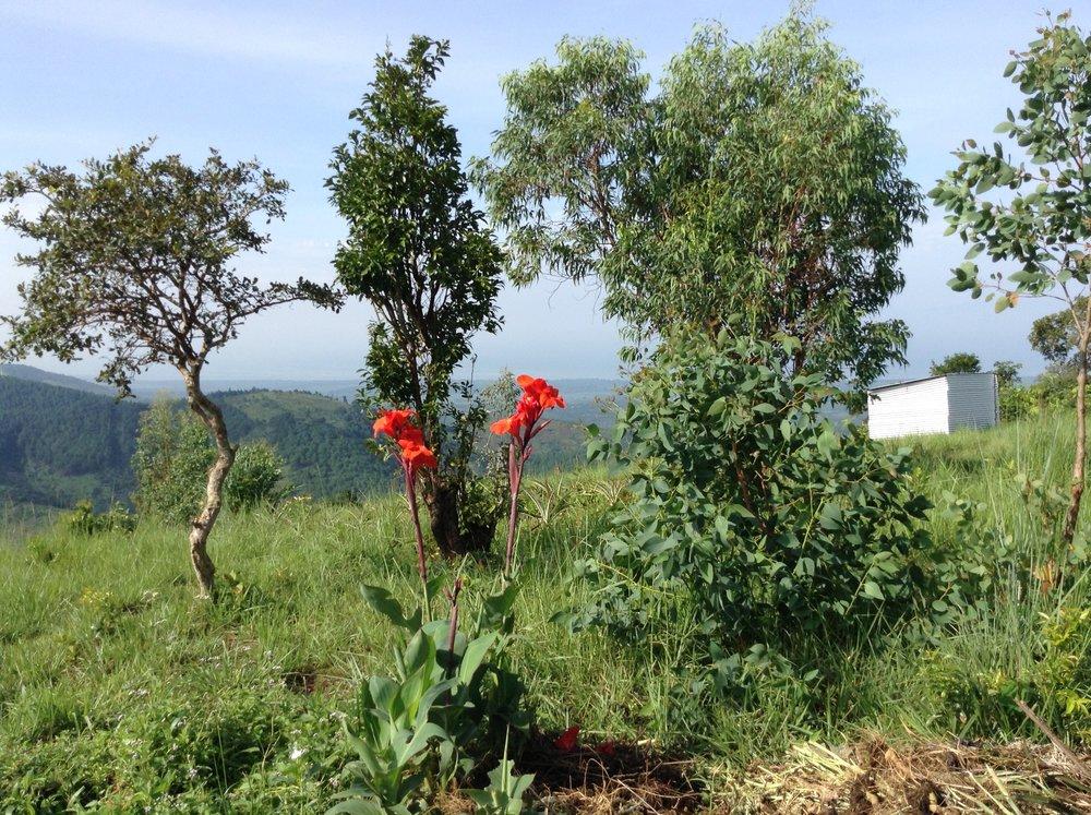 Burundi Scenery.jpg