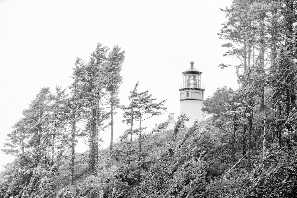 Heceta Head Lighthouse (4414)