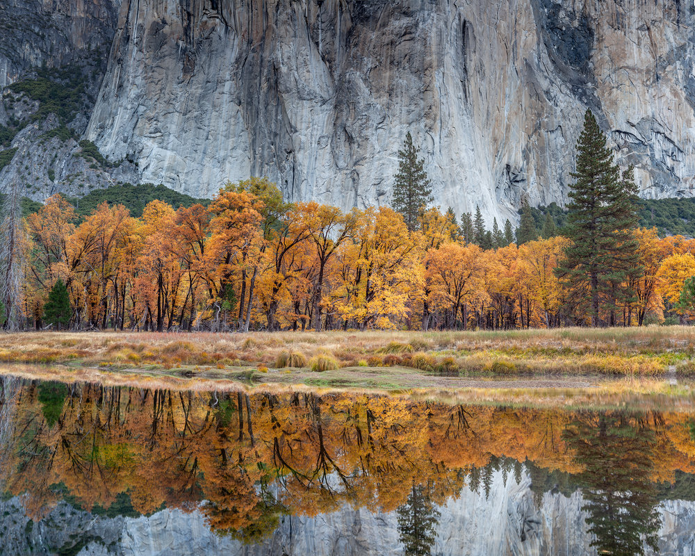 El Capitan Reflection (5523-25)