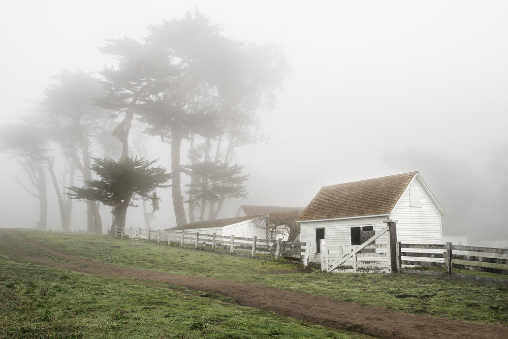 Pierce Ranch in Fog - Point Reyes (6189)