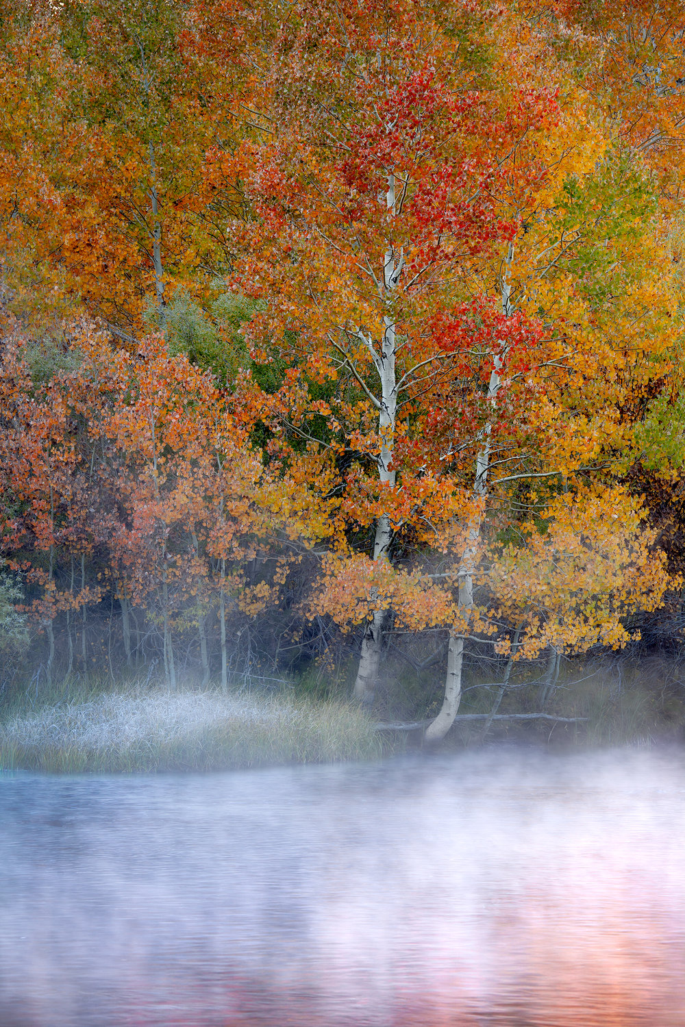 Rush Creek Mist (4752)