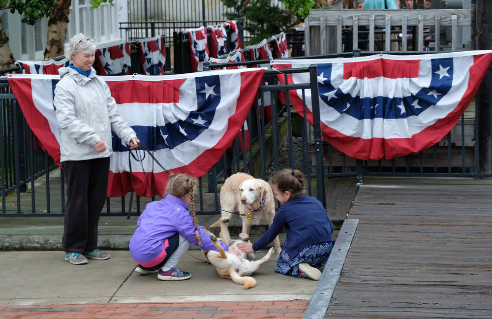 Okay, so I had to include this image, a common sight in Annapolis. Whenever kids and dogs meet on the street, there is sure to be some belly scratching. It is almost an Annapolis tradition.