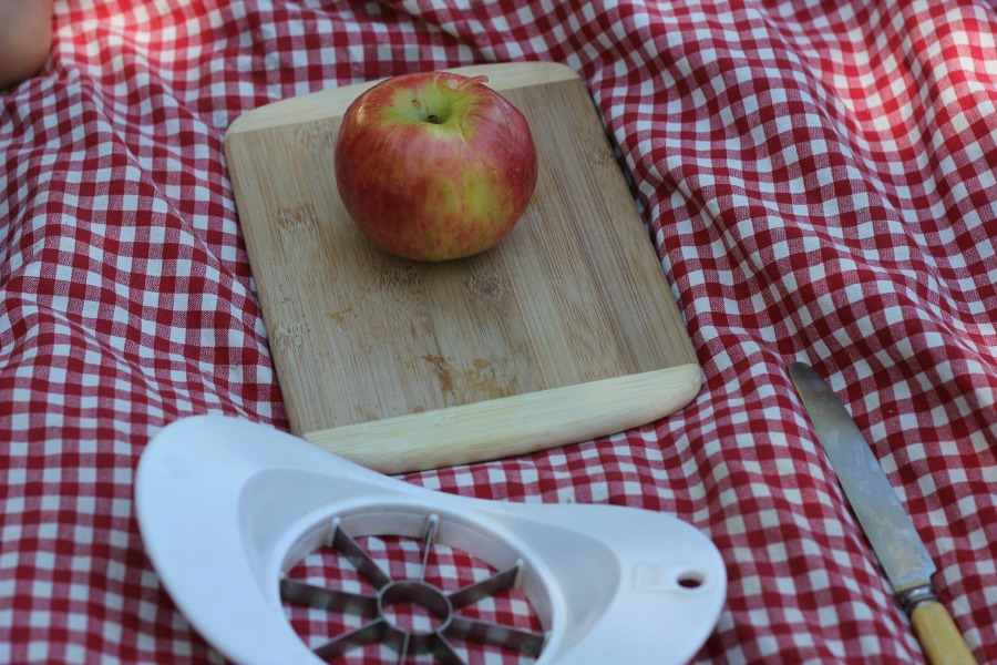 Great idea for a picnic with kids - wrap an apple, a butter knife, a cutting board, and an apple slicer in a small tablecloth, and have your child prepare the picnic snack!