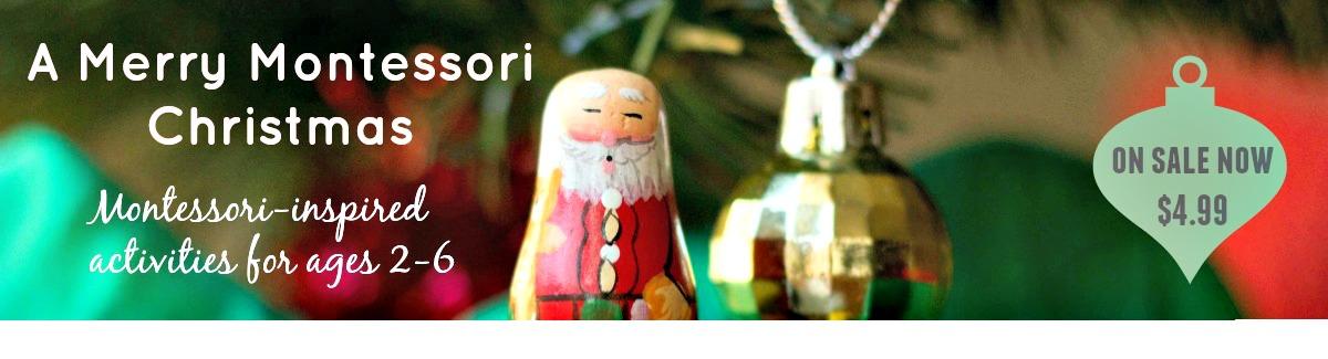 Merry Montessori Banner 4