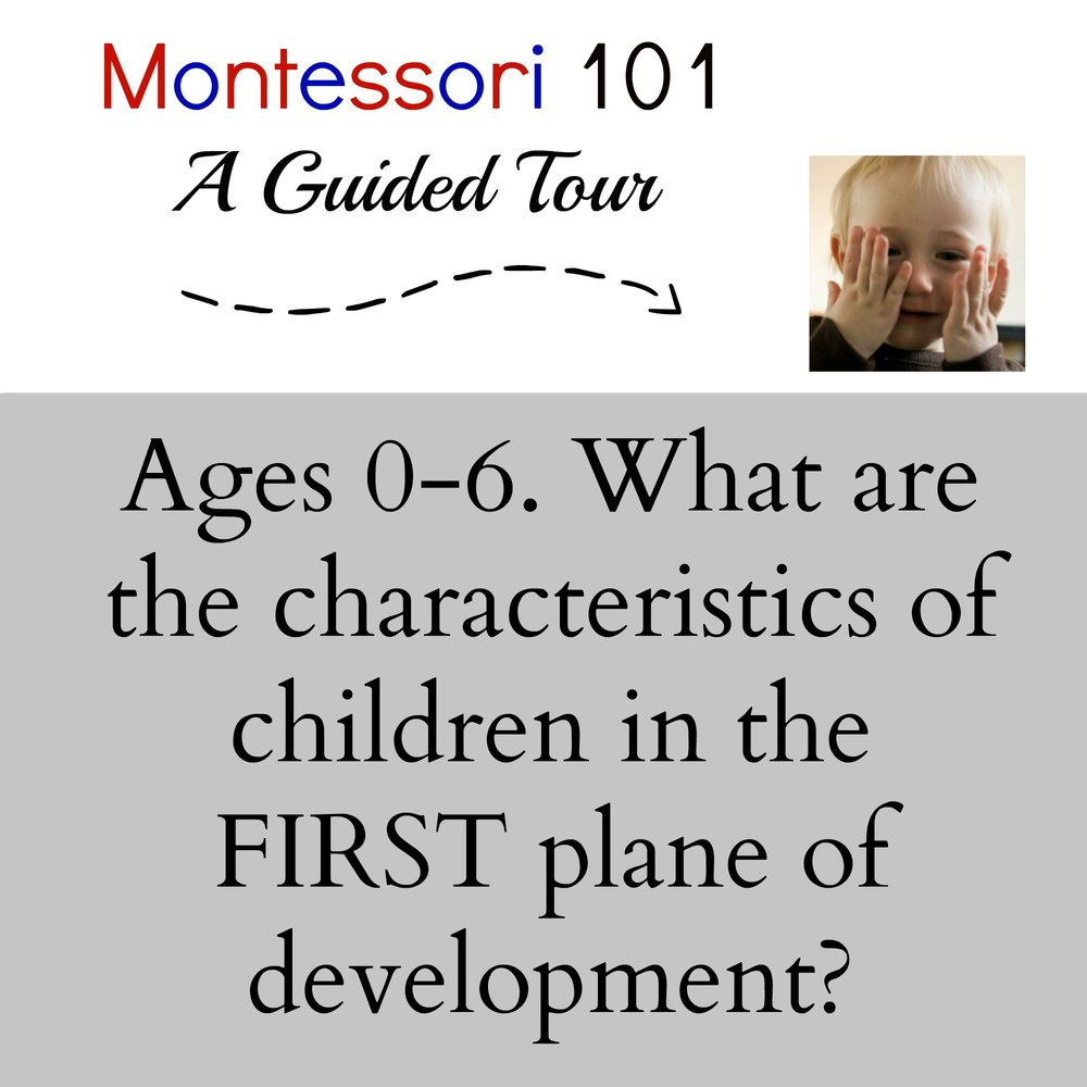 Montessori theory: The First Plane of Development