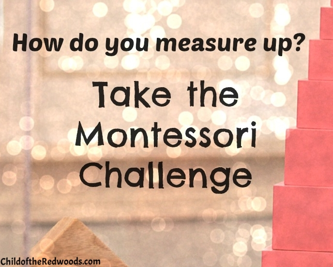 Maria Montessori was a pretty amazing woman. How do you measure up? Take the Montessori Challenge and see.