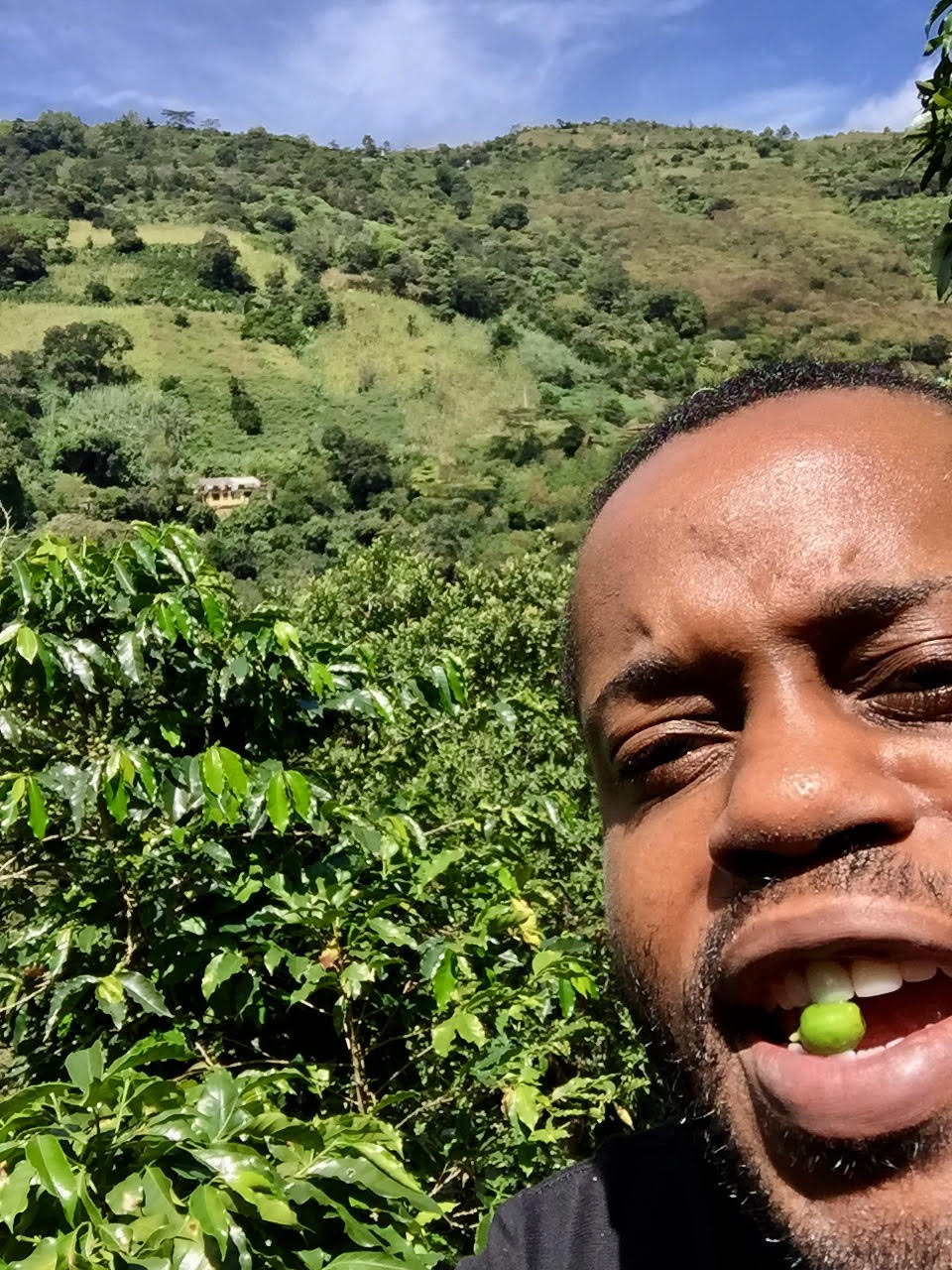 Chad's first visit to a coffee farm and tasting the crisp peppery favor of an unripe coffee cherry.