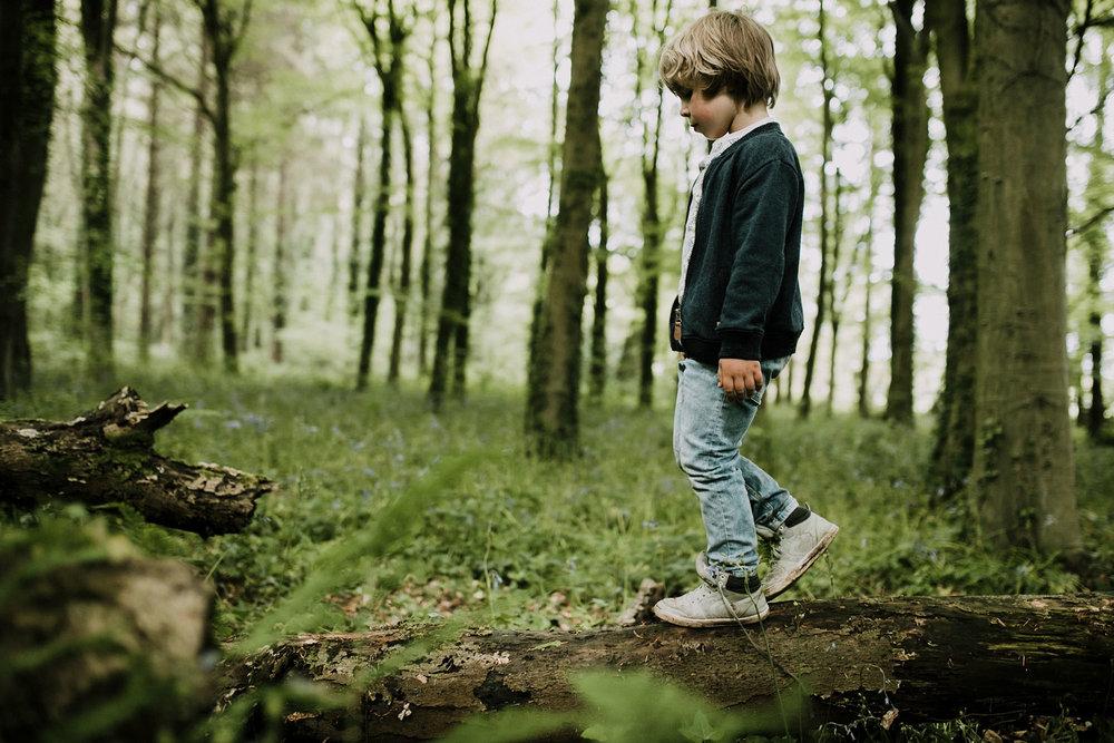 bluebell woods-32.jpg