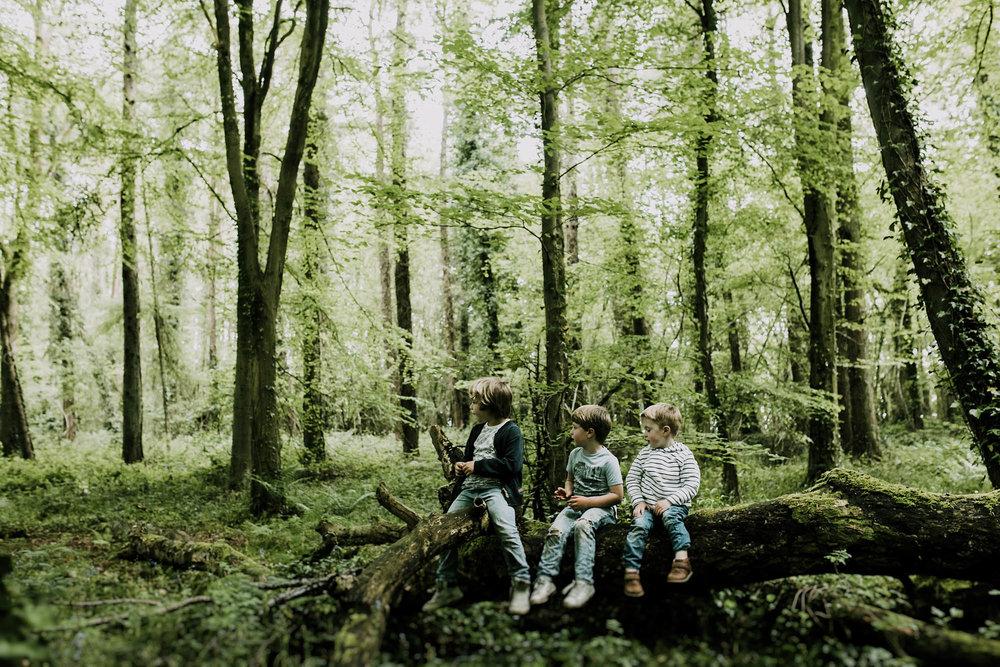 bluebell woods-46.jpg