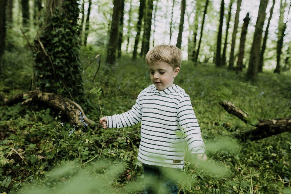 bluebell woods-66.jpg