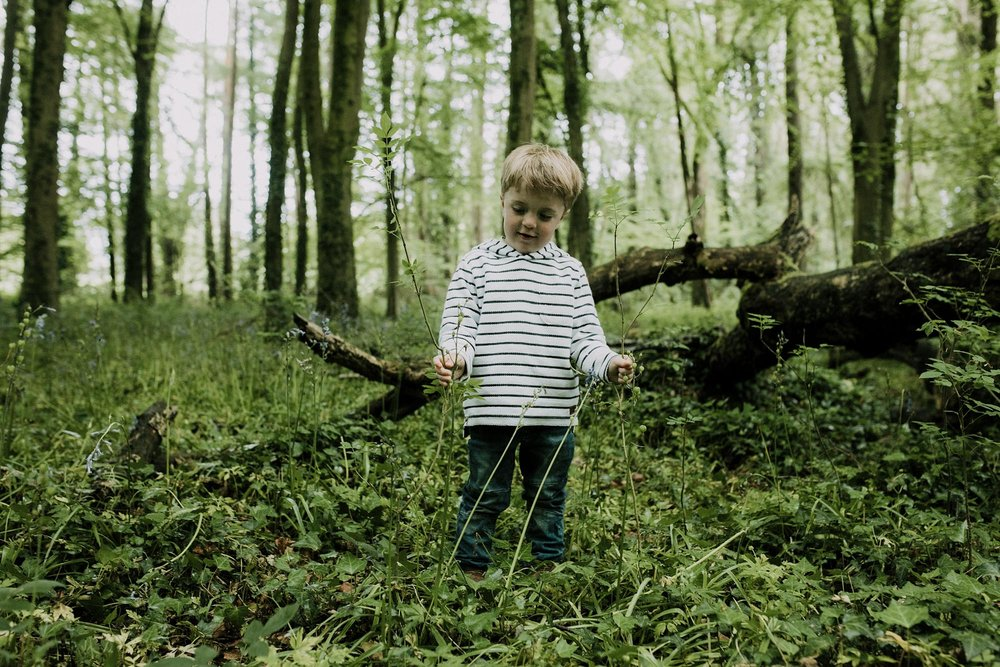 bluebell woods-67.jpg