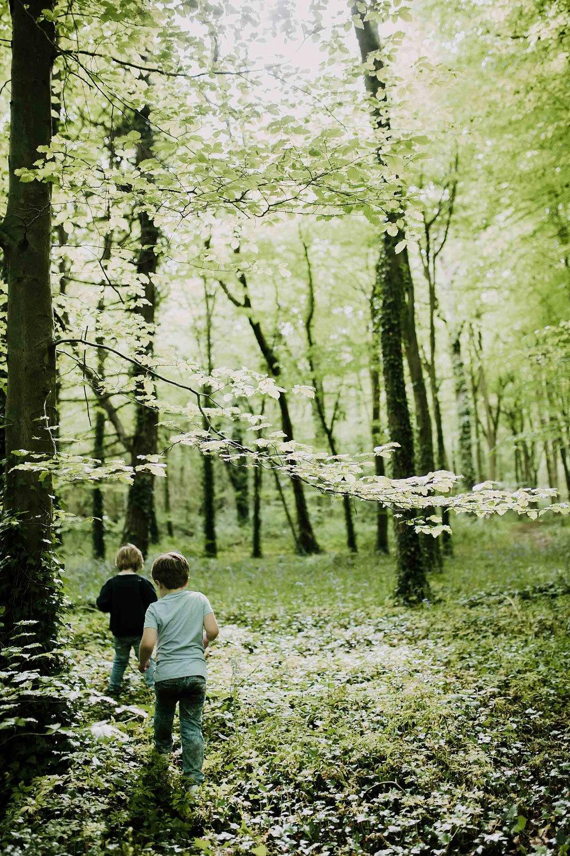 bluebell woods-84.jpg