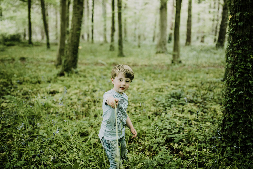 bluebell woods-111.jpg