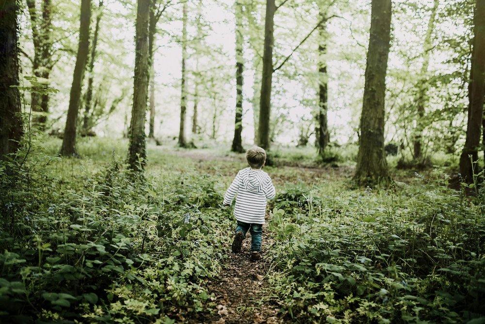 bluebell woods-141.jpg