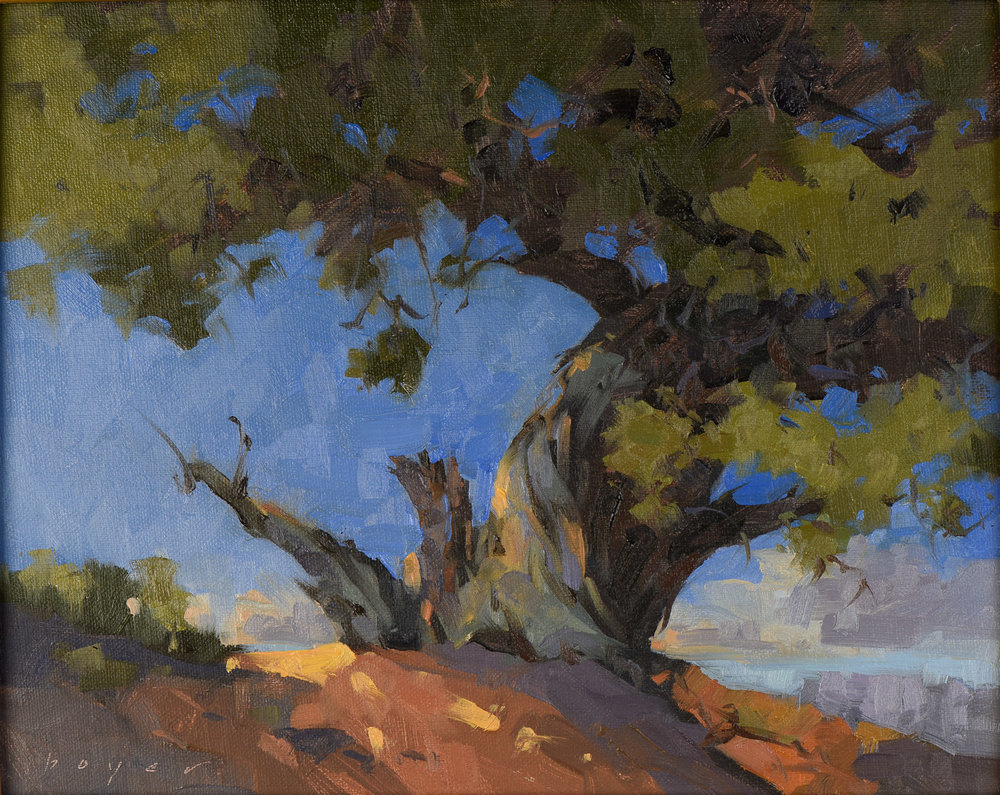 Juniper at Deadhorse Point by Lyn Boyer