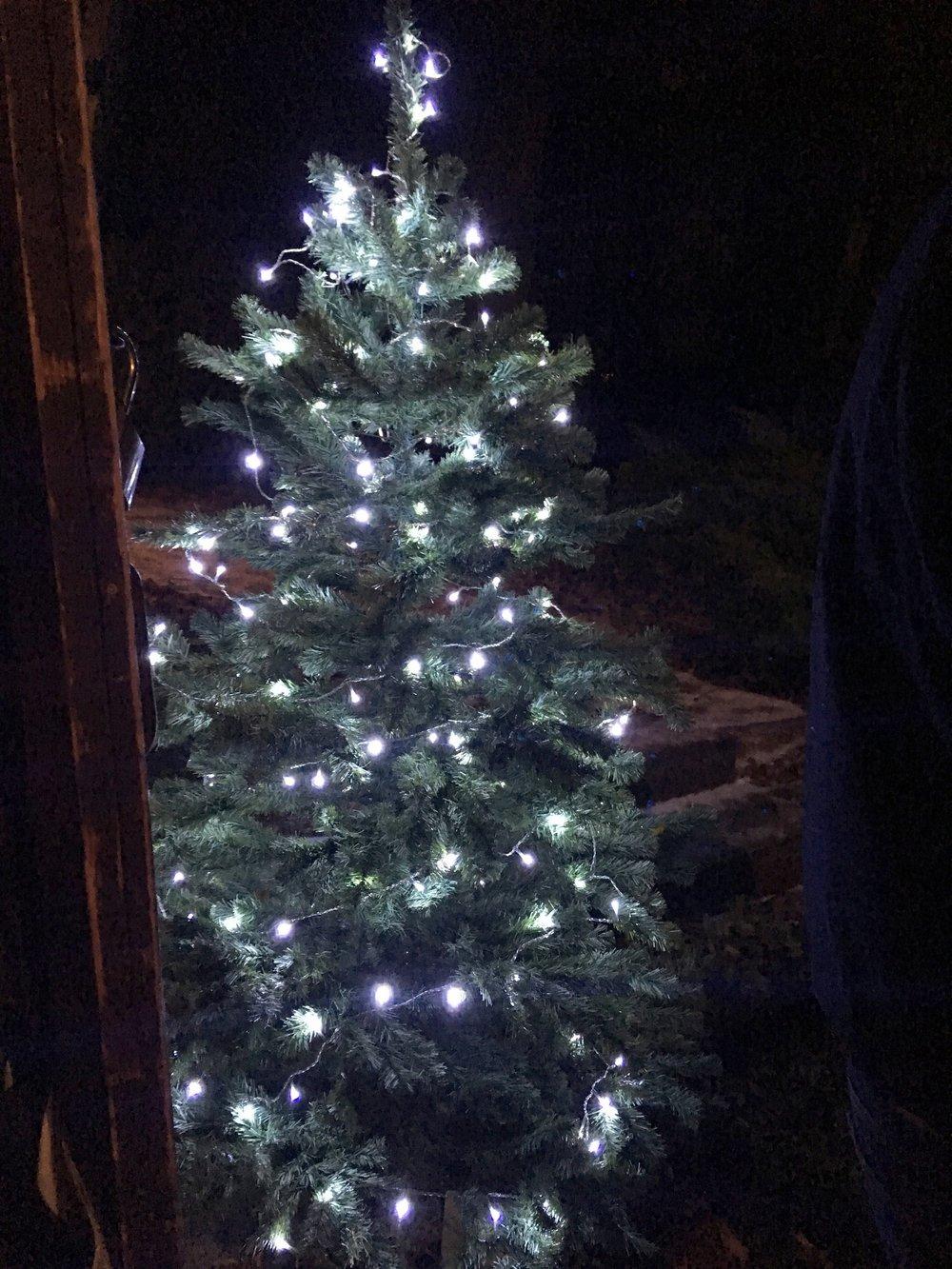 10.12.17_AYC_Weihnachtsgrillen_cme_IMG_1849.jpg
