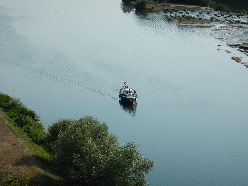 Bild 22 - Olive entre Rhône et Rhin I