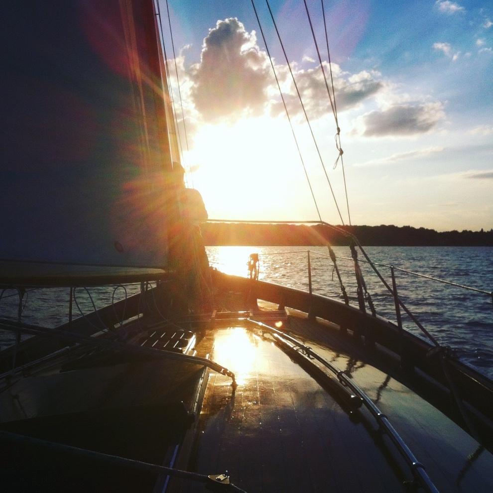 Bild 29 - Der Sonne entgegen