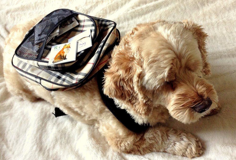 Hermine avec le sac à dos dans lequel, après un parcours, ils pourront piger parmi les quelques-uns sélectionnés pour l'internveiton.