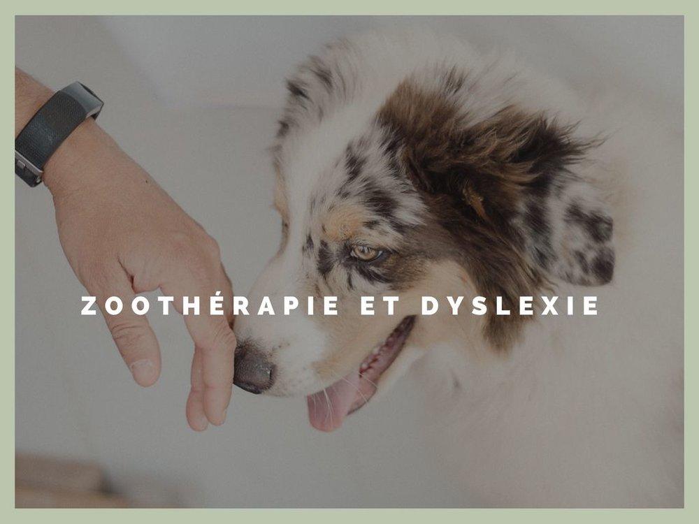 zootherapie-et-dyslexie-chien-.jpg