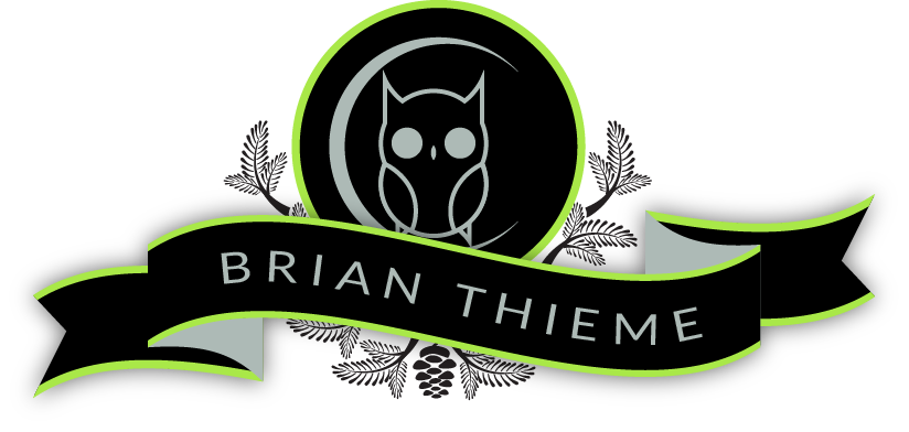 Brian Thieme - Animator & Illustrator