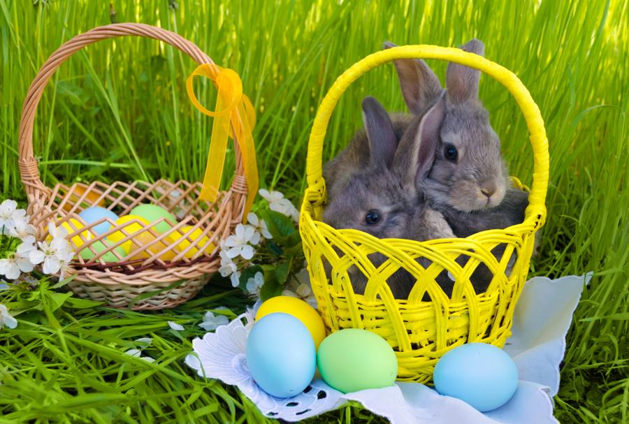 Houston property owners celebrate Easter.jpg