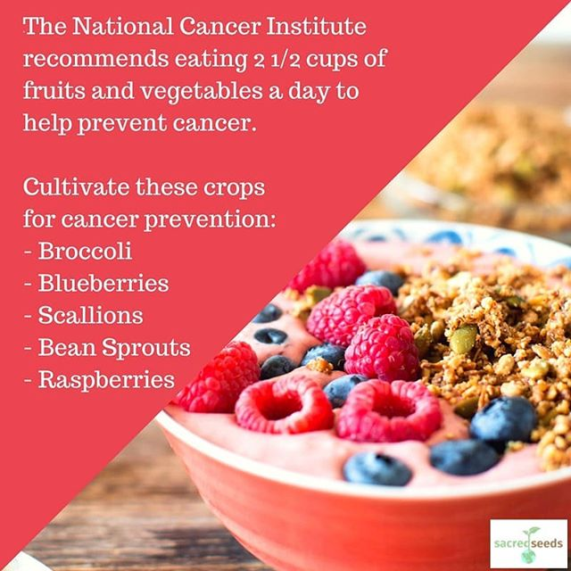An estimated 1,735,350 people will be diagnosed with cancer in the United States in 2018. A healthy diet can help to protect your family against it. Incorporate cancer-prevention crops into your garden this year. #Strive2Thrive #cancerprevention