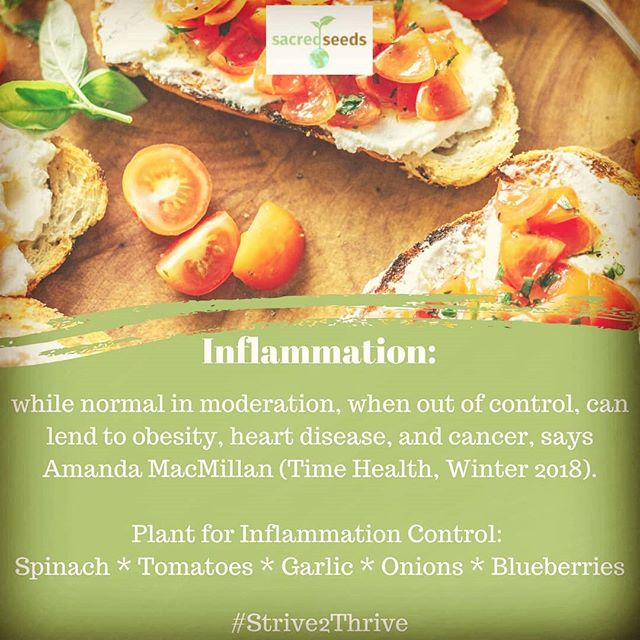 When #inflammation occurs in parts of our bodies that don't have nerves, we may not notice it, but the long-term damage can cause serious impairment. Incorporating foods into our diets that control inflammation can lend to a longer, happier life. #Plant for #healthyliving. #Strive2Thrive