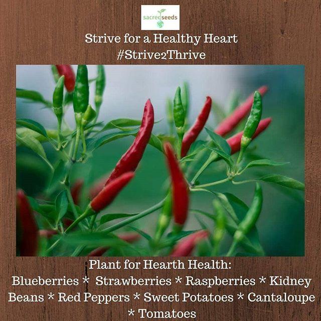 #Strive2Thrive #hearthealth #health #gardening #gardentips