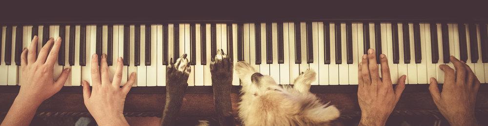 pianopawss vintage.jpg