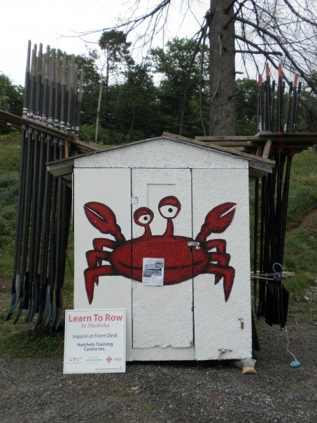 The crab shack. With storage for lifejackets, whistles, coaching notes and our printer on the inside and oar storage on the outside. What more do you need?? With the added bonus of being able to take it ice fishing in the winter.