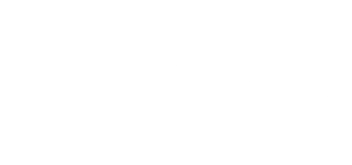 Raleigh Lettering Co.