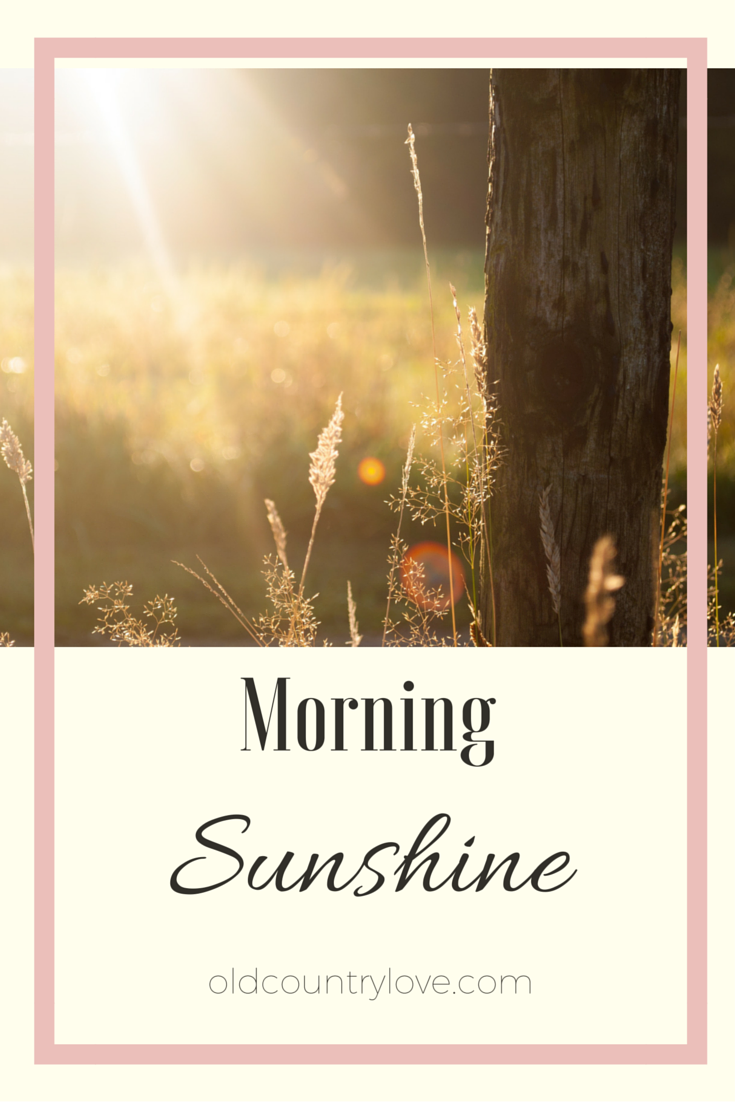 Pin Morning Sunshine!