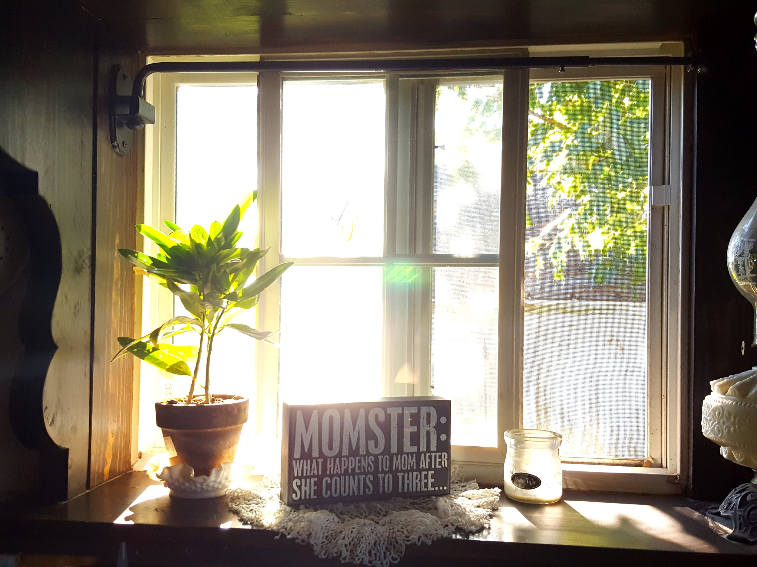 The morning sunshine streaming through my window.