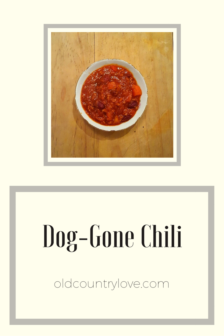 Dog-Gone Chili, the perfect chili recipe for you and your pooch!