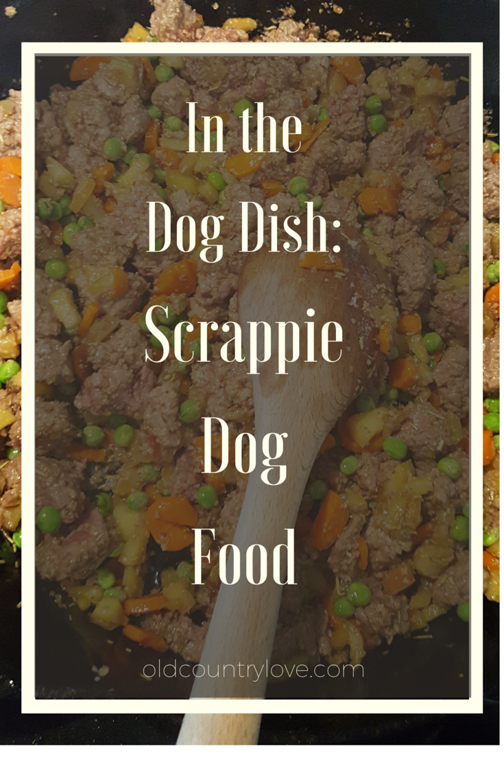 In the Dog Dish: Scrappie DOg Food...a inexpensive, healthy meal for you and your pooch!
