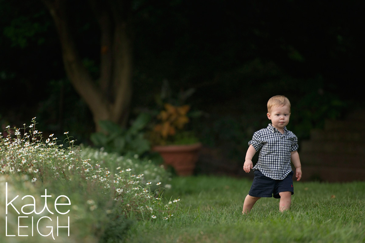 little boy walking along a field of flowers