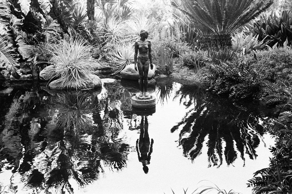 pond-lady.jpg