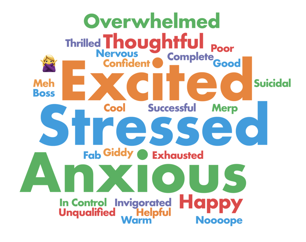Survey results showed the overwhelming collection of words describing how we feel hosting a party.