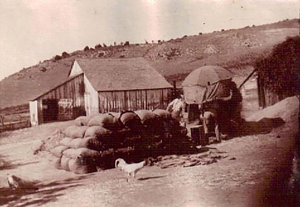 Barn & Yard 1915.jpg