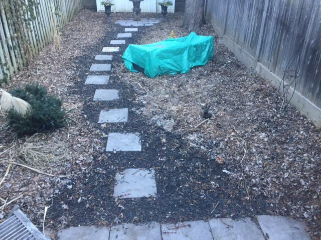 BACKYARD LANDSCAPE - BEFORE