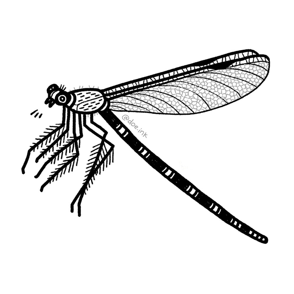 Bug 1 doe.ink tattoo.jpg