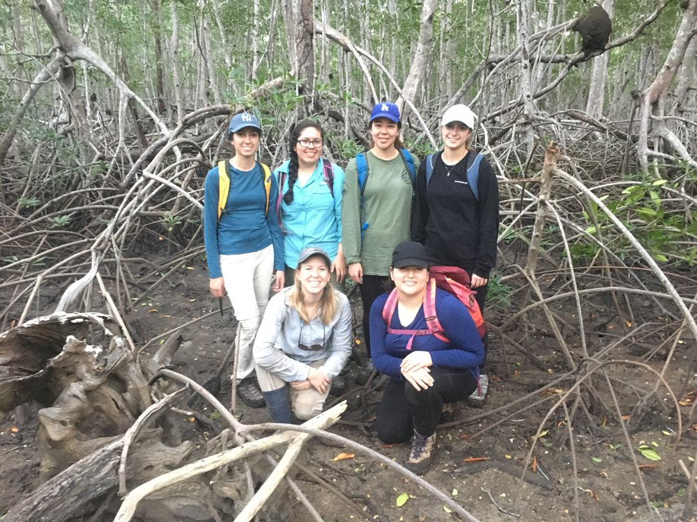 Student group for mangrove monitoring project for CSUCI course in Costa Rica