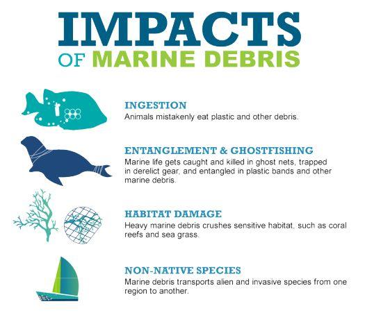 3c1539d1a5bf513586316ca5a08665dc--marine-debris-environmental-degradation.jpg