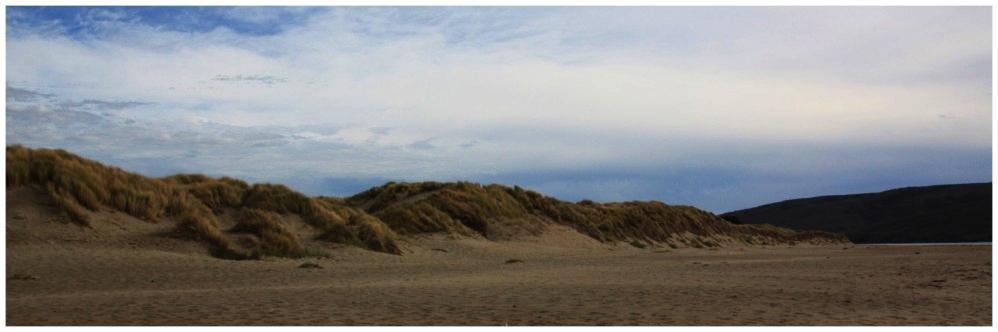 Lawsons-Landing-Dillon-Beach-Bryce-Sept2015-4-1000x629.jpg